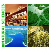 Natural Sciences (13)