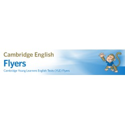 YLE: Flyers