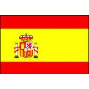 Spanish Literature (39)